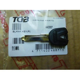 TGB Partnr: 440997   TGB description: BLANK KEY
